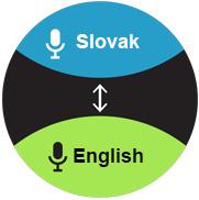 prekladač slovensko anglicky